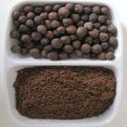 Pimenta-da-jamaica Pimenta karst