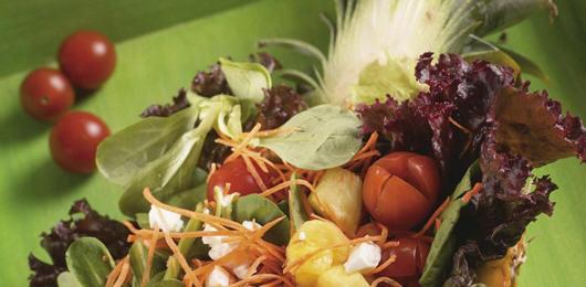 Salada de Legumes com Ananás e Queijo Fresco