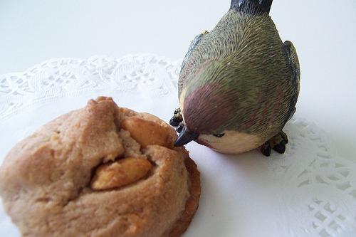 Bolinhas de coco e amendoim