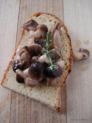 Crostone Negro com Truta Defumada