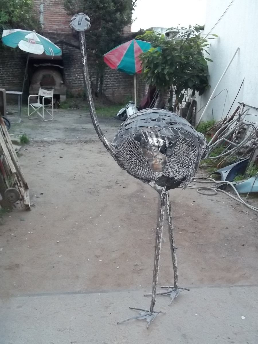 Avestruz na Chapa