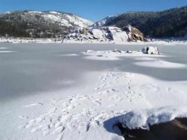 Gelado Nevado