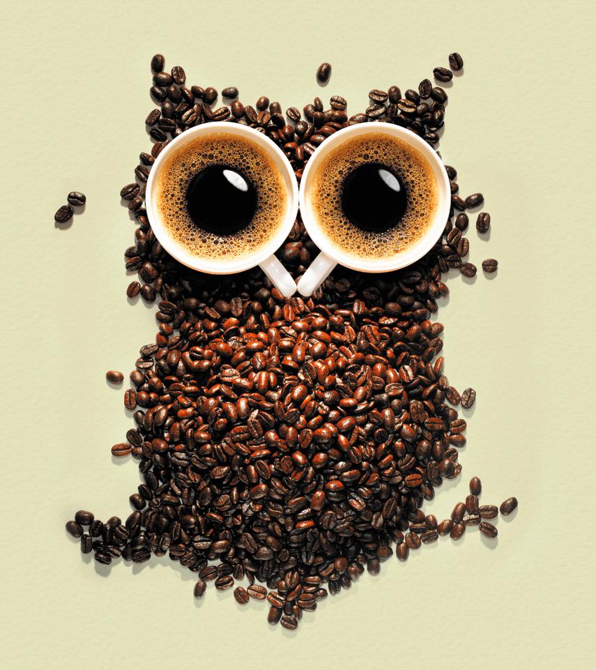 Outras Utilizações do Café