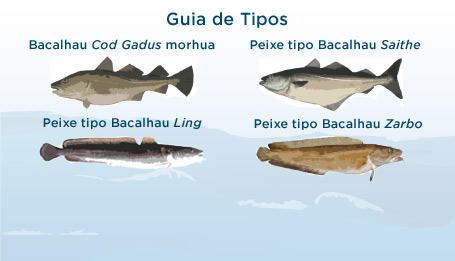 Como identificar o bacalhau tipo code ou porto