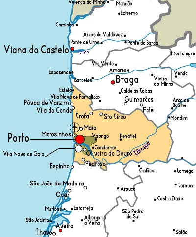 Galantina de Mocotó