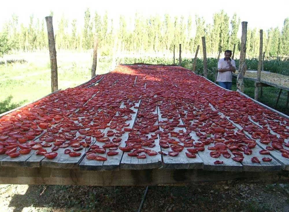 Tomates Secos II